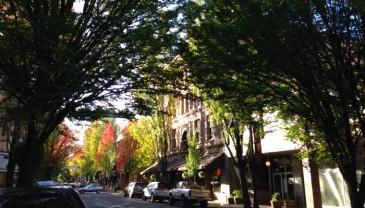 macdowntown_street